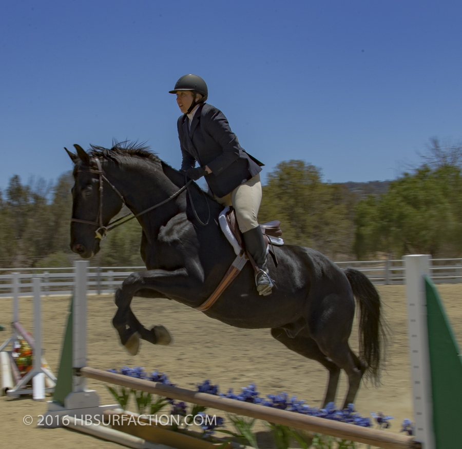 HorseShow-hbsurfaction-20160522-_G7T7069-2